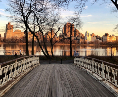 NY bridge in park